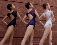 画像3: 新入荷 Ballet Rosa,バレエローザ DAUPHINE レオタード (3)